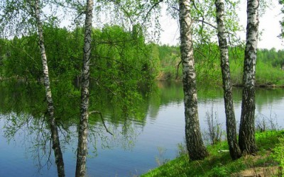 Берёзовая река